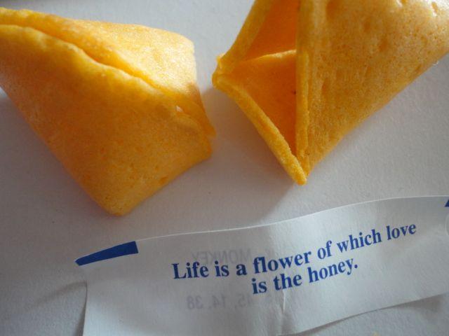 fortune2013