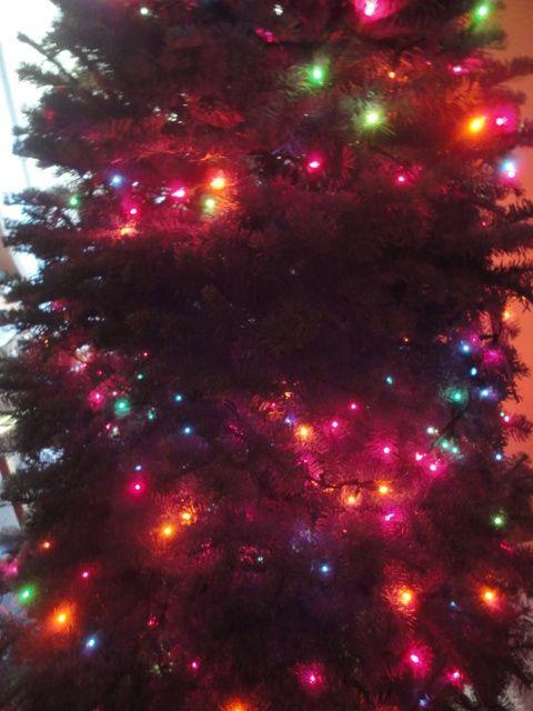 c1:tree