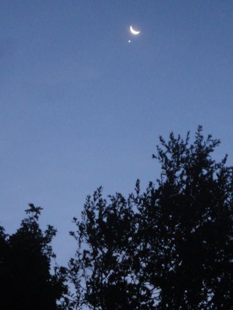 auspicious:moon:venus