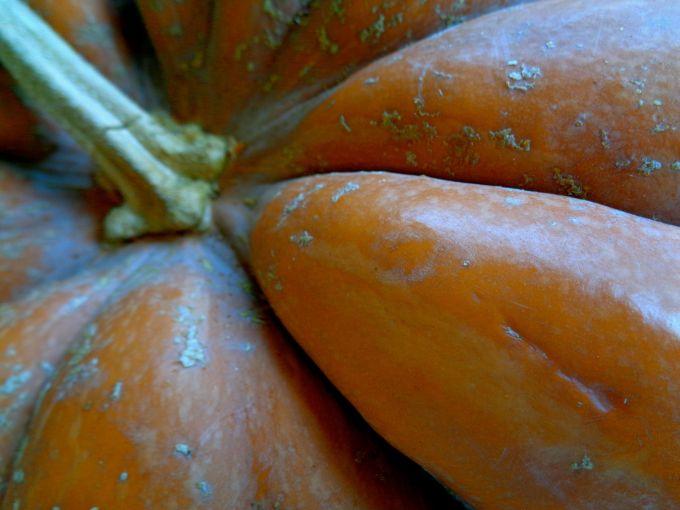 cinderella-pumpkin-2016
